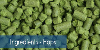 Ingredients - Hops