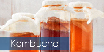 Kombucha & Ferments